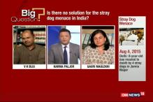 Is There no Solution for Stray Dogs Menace in India?
