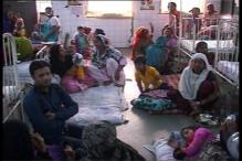 3 Chikungunya Deaths in Delhi; Centre, Kejriwal Govt Resort to Blamegame