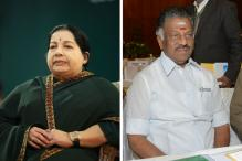 Panneerselvam Takes Over Jaya's Portfolios, But Won't be Tamil Nadu CM