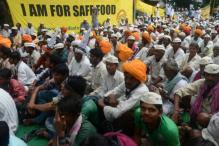AAP Celebrates 'Jashn-e-Sarso' To Oppose GM Mustard