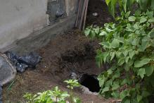 6-Year-Old Dies After Falling Into Septic Tank