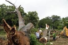 Hurricane Otto Kills Nine in Costa Rica