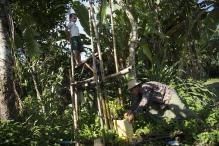 Myanmar Farmers Use 3D Printing to Produce Farming Equipments
