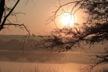 Rajasthan Food Trail: Exploring Ranthambore