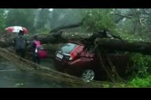 Cyclone Vardah: CM Panneerselvam Asks Rs 1,000 Crore Aid From Centre
