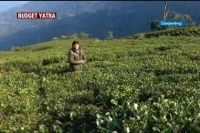 #AxeTheTax: Tea Industry Demands Export Subsidy