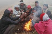 Cold Wave Sweeps North India, Srinagar at -6.3 Degree