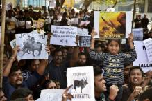 After Jallikattu's Success in Tamil Nadu, Andhra Youth to Protest for Special Status