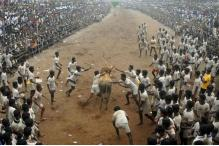 Tamil Nadu Govt Issues Guidelines For Holding Jallikattu
