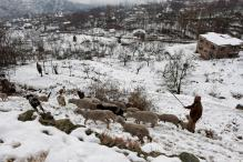 Cold Wave Continues as Kashmir Valley Braces for Rain, Snow