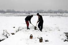 Bountiful And 'Snowful', Winter Reclaims Its Glory in Kashmir