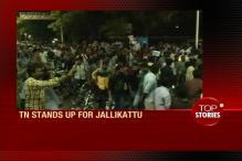 News360: Tamil Nadu Stands UP For Jallikatu, Demand CM to Respond