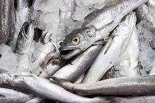 Consuming Fish Could Increase Risk of ALS