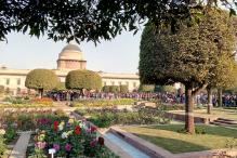 A Look at The Beauty of Mughal Garden, See Pics