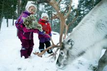 Arctic's Indigenous Sami People to Celebrate National Day
