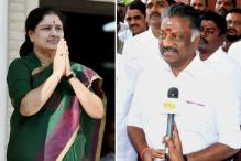Here is Why Congress Leaders Are Split on Sasikala Vs Panneerselvam