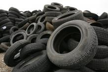 Car Tires Can be Made From Waste Tomatoes and Eggs: Research