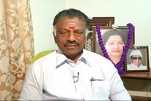 Fight For Amma's Seat With AIADMK Symbol: Panneerselvam