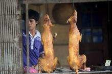 Taiwan Becomes First Asian Country to Ban Eating Dogs And Cats