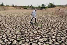 Waive Loans of All Drought-affected Farmers: High Court to TN Govt