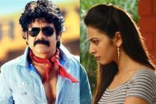 Nagarjuna, Rakul Preet Singh, Naga Chaitanya Condemn Chalapathi Rao For His Sexist Comment