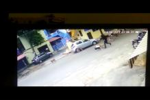 Pack of Stray Dogs Attack Woman in Bengaluru, Caught on Camera