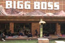 Bigg Boss Season 11: Contestants Go Wild in the Bigg Boss Jungle