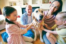 Growing Up with Dogs Protects Children from Asthma & Eczema: Study