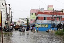Chennaiites Rely on Private Social Media Pages for Flood Warnings