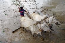Uttar Pradesh Sets up Yogi-led Panel to Double Farmers' Income by 2022