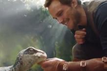 Jurassic World 2 First Glimpse Sees Chris Pratt Treating Ancient Predators Like Pets