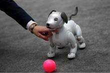 CES 2018: Sony Unleashes Intelligent Robotic Dog 'Aibo' at The World's Biggest Tech Show