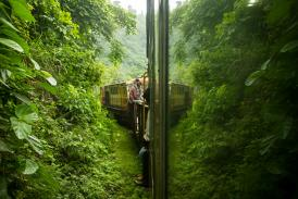 Kalka-Shimla Toy Train: A Rail Route That Transits You In Tranquility