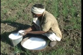 Govt Acts on Farmers' Call, GST on Fertilizers Reduced From 12% to 5%