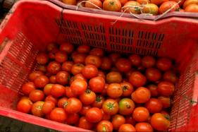 Tomato Prices Soar to Rs 100 Per Kg in Delhi-NCR on Low Supply