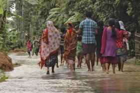 Animal Behaviour Guides Assam Villagers Out of Flood Danger