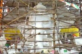 Telangana Govt to Arrange Small Ponds to Immerse Idols