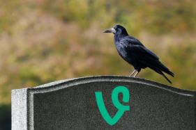 Twitter Kills Vine: Here are 10 Best Vines You Can't Miss