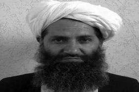In a Rare Call, Taliban Urges People to Plant More Trees