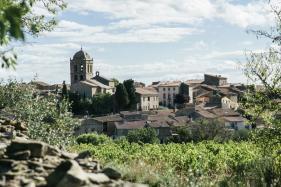 New Languedoc Stars: La Liviniere Wines Shine