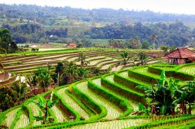 Bali Bags Best Global Destination For 2017 in Travelers' Choice Awards
