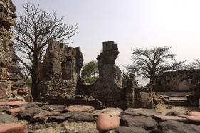 Gambia's Race to Save its 'Roots' on Kunta Kinteh Island