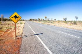 Know Why You Should Visit Kangaroo Island