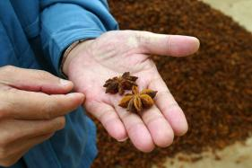 Know Your Spices: Health Benefits of Star Anise And Recipes You Can Try