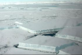 Giant Iceberg Like 'Niggling Tooth' Set to Crack Off Antarctica