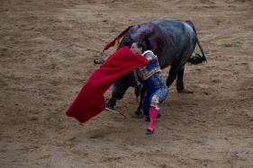 Spanish Bullfighter Dies After Being Gored