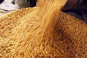 Chana Dal: The Latest Entry in Oxford English Dictionary