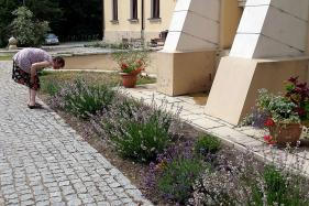 Flower Power: Gardening as Therapy in Poland