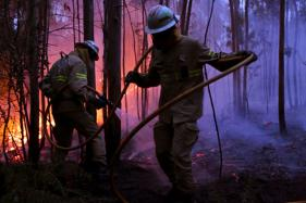 At Least 62 Killed in Forest Fire Still Raging in Portugal