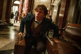 Fantastic Beasts Sequel Reveals Further Plot Details and Casting